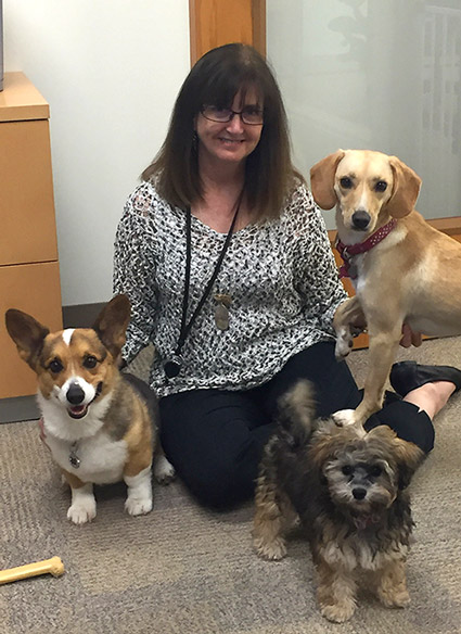 Taz, CEO Jackie Levin, Mochi and Gemini