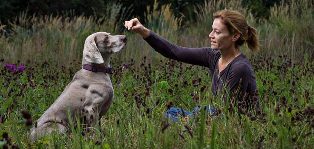 Susan Jojola, Behavior Science with dog